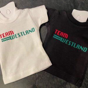 Team Westland
